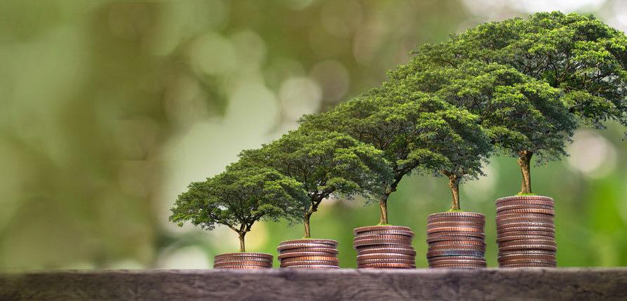 Finantare Dezvoltare