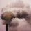 Cum reducem emisiile de CO2 în România?